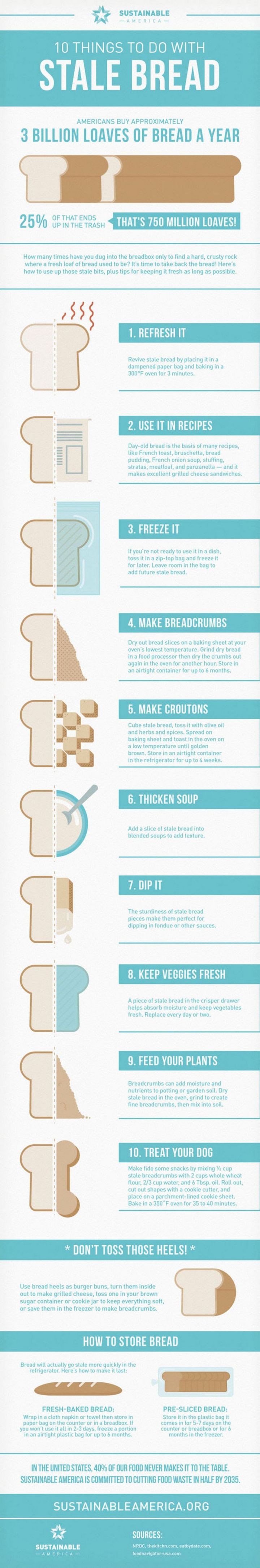 10 things to do with stale bread infographic.
