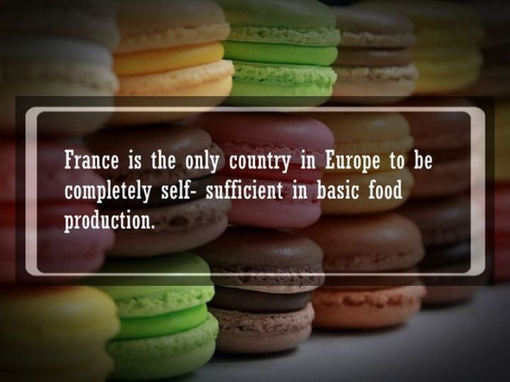 """19 Food Facts - """"France is the only country in Europe to be completely self-sufficient in basic food production."""""""