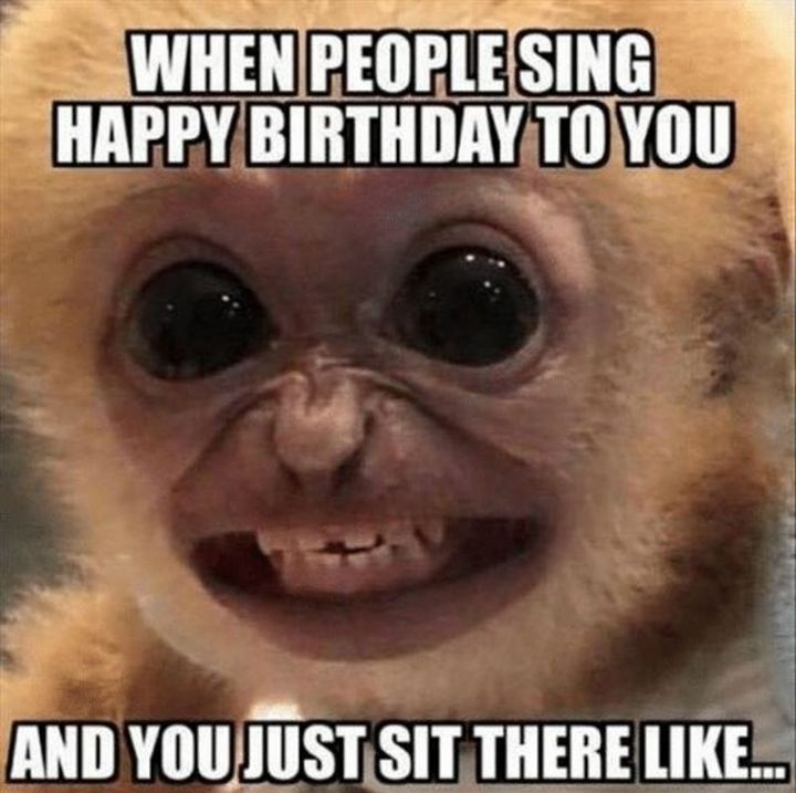 "101 Happy Birthday Memes - ""When people sing Happy Birthday to you and you just sit there like..."""