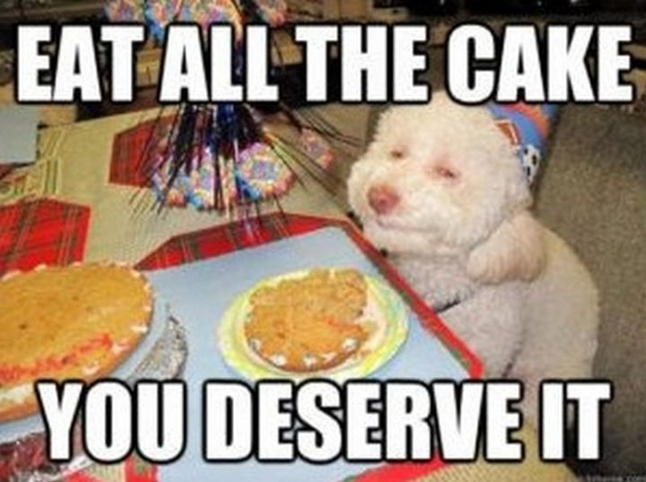 "101 Happy Birthday Memes - ""Eat all the cake, you deserve it."""