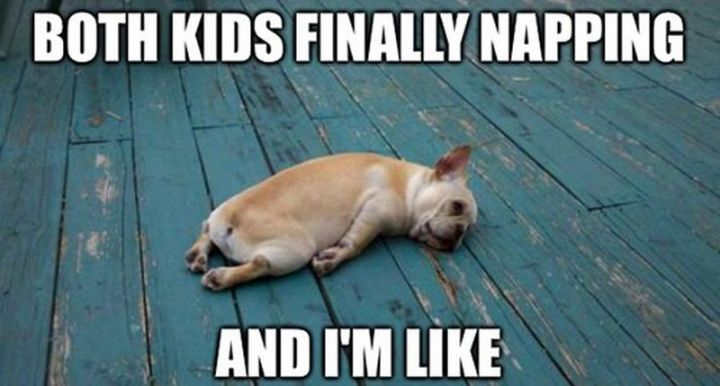 """37 Best Exhausted Memes - """"Both kids finally napping and I'm like."""""""
