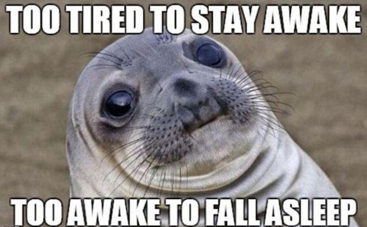 """37 Best Exhausted Memes - """"Too tiredto stay awake. Too awake to fall asleep."""""""
