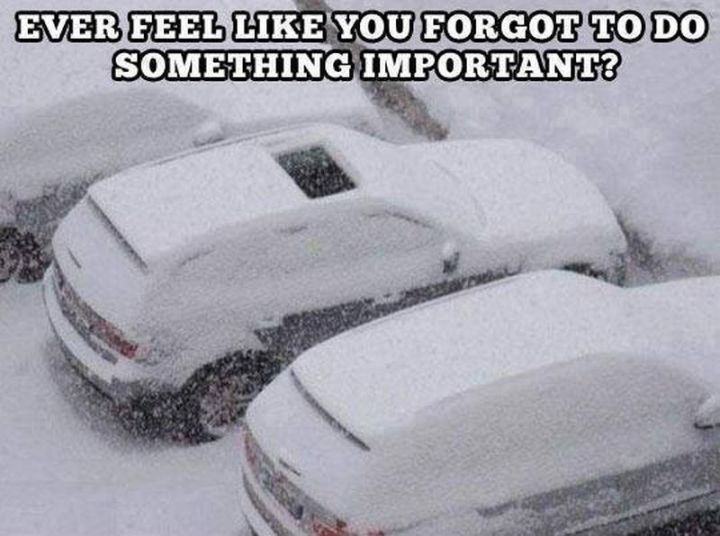 "55 Funny Winter Memes - ""Ever feel like you forgot to do something important?"""