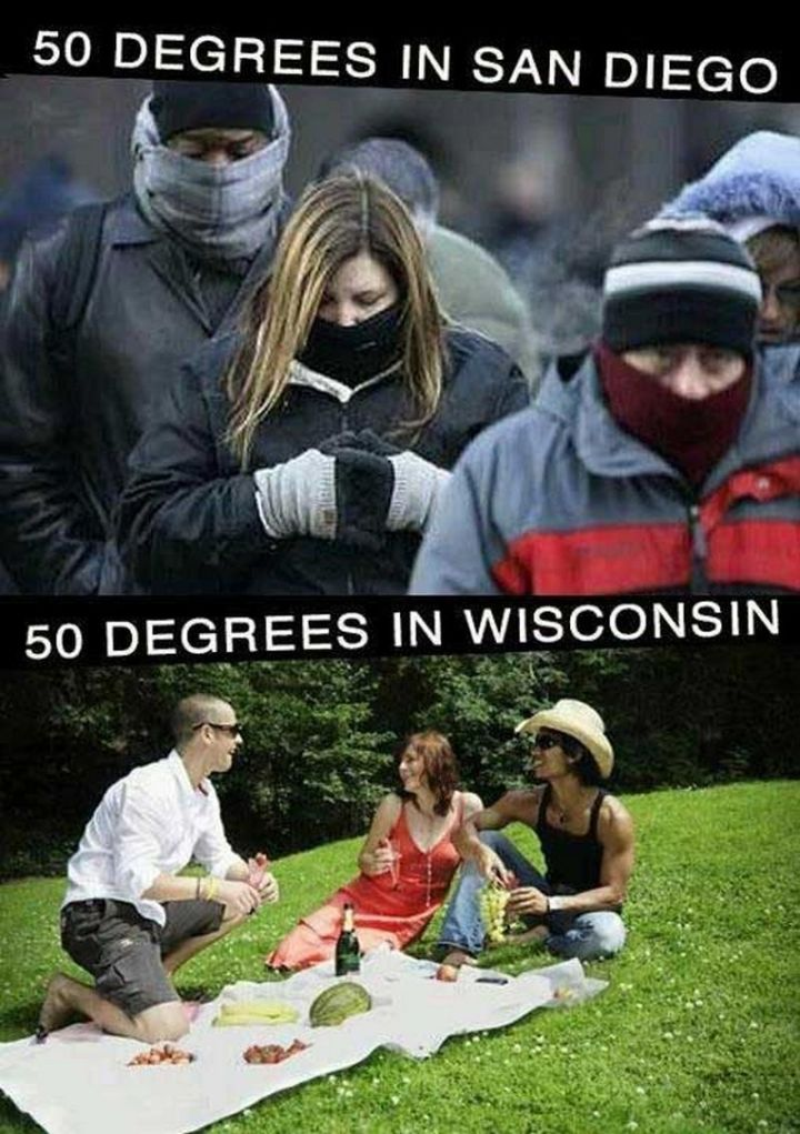 "55 Funny Winter Memes - ""50 degrees in San Diego. 50 degrees in Wisconsin."""