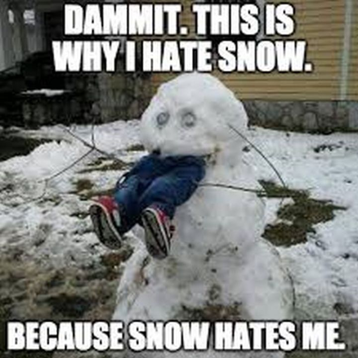 "55 Funny Winter Memes - ""Dammit. This is why I hate snow. Because snow hates me."""