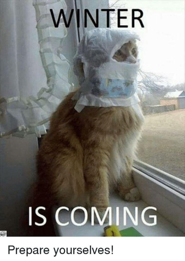 "55 Funny Winter Memes - ""Winter is coming. Prepare yourselves!"""