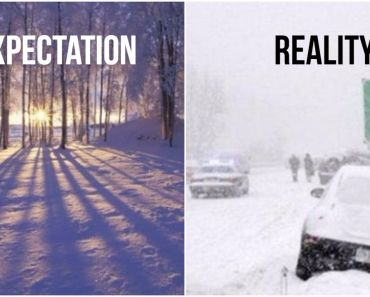 55 Funny Winter Memes That Are Instantly Relatable If You're Dealing with a Polar Vortex.