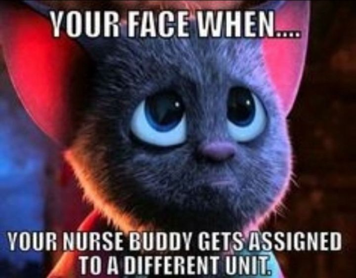 """101 Funny Nursing Memes - """"Your face when...your nurse buddy gets assigned to a different unit."""""""