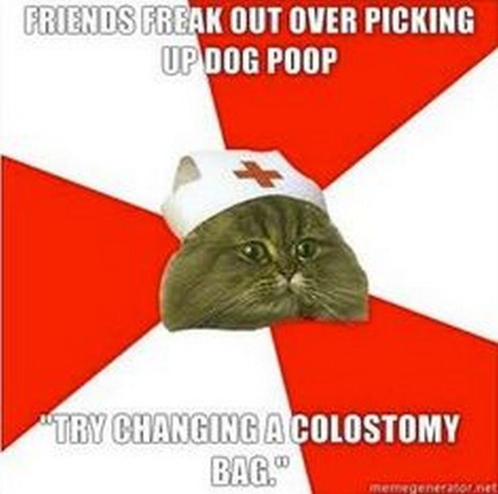 """101 Funny Nursing Memes - """"Friends freak out over picking up dog poop. 'Try changing a colostomy bag.'"""""""