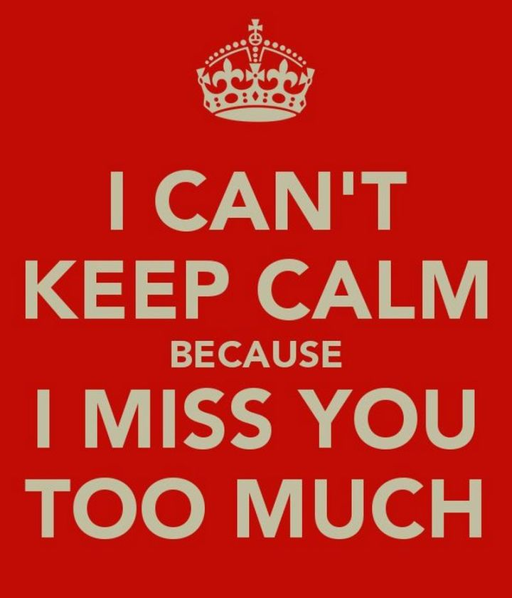 "101 I miss you memes - ""I can't keep calm because I miss you too much."""