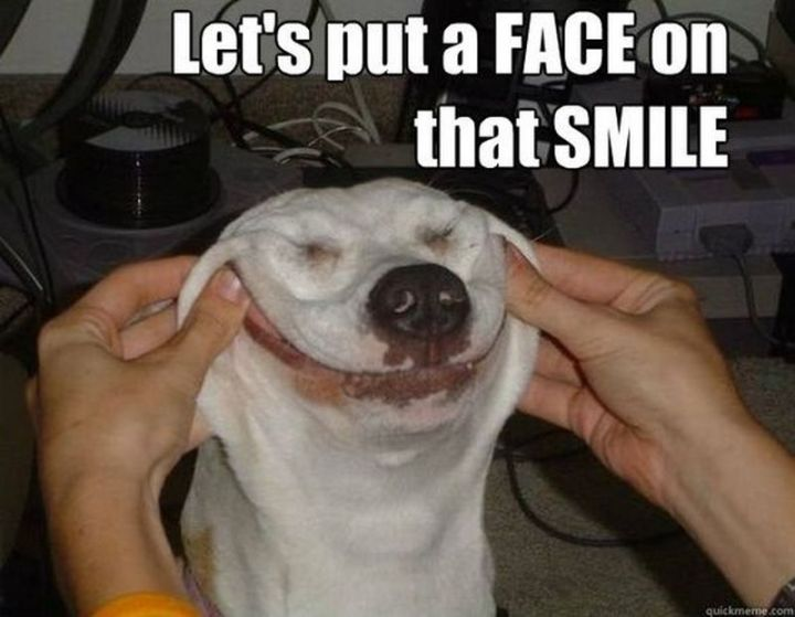 """101 Smile Memes - """"Let's put a FACE on that SMILE."""""""