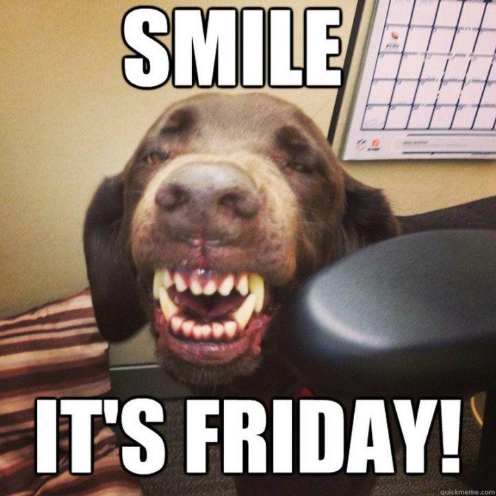 "101 Smile Memes - ""Smile. It's Friday!"""