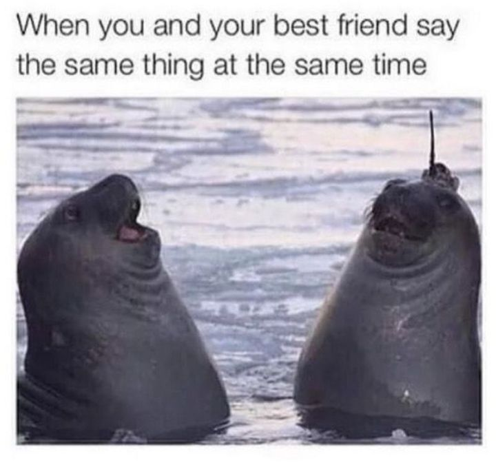 """When you and your best friend say the same thing at the same time."""