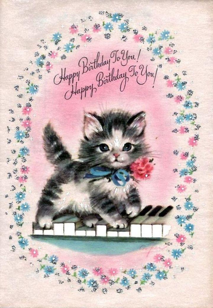 "101 Funny Cat Birthday Memes - ""Happy Birthday To You! Happy Birthday To You!"""