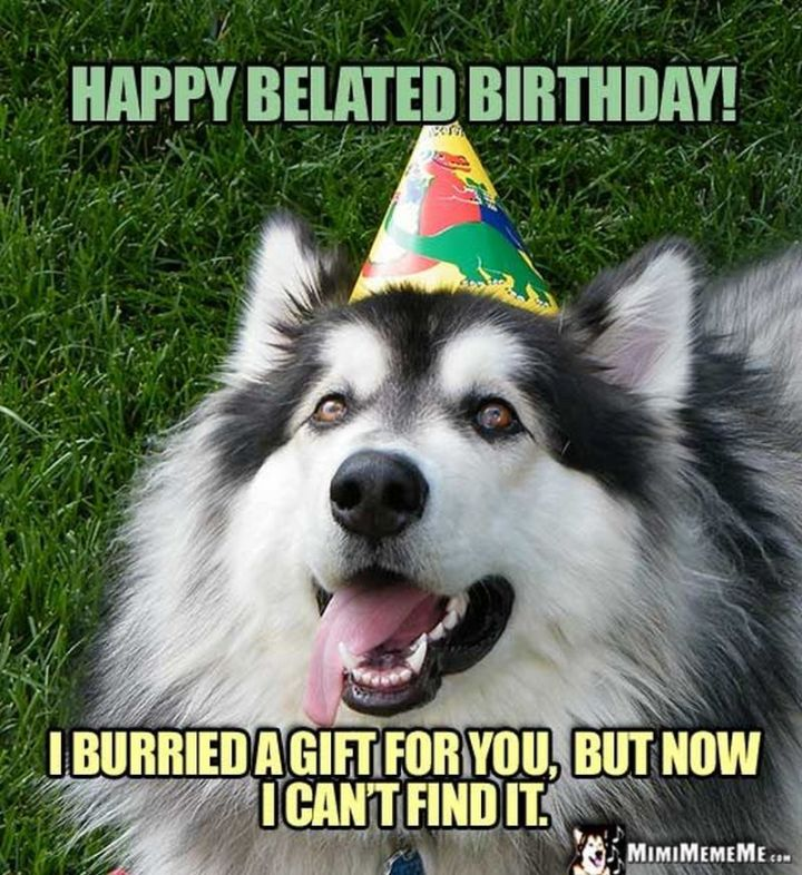 """85 Happy Belated Birthday Memes - """"Happy belated birthday! I buried a gift for you, but now I can't find it."""""""