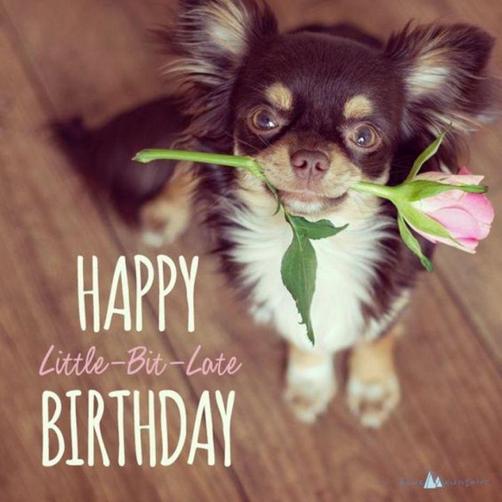 "85 Happy Belated Birthday Memes - ""Happy little-bit-late birthday."""