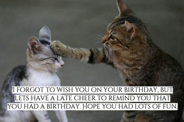 """85 Happy Belated Birthday Memes - """"I forgot to wish you on your birthday. But let's have a late cheer to remind you that you had a birthday. Hope you had lots of fun."""""""