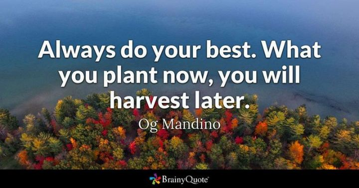"41 Incredibly Powerful Quotes - ""Always do your best. What you plant now, you will harvest later."" - A powerful quote by Og Mandino"