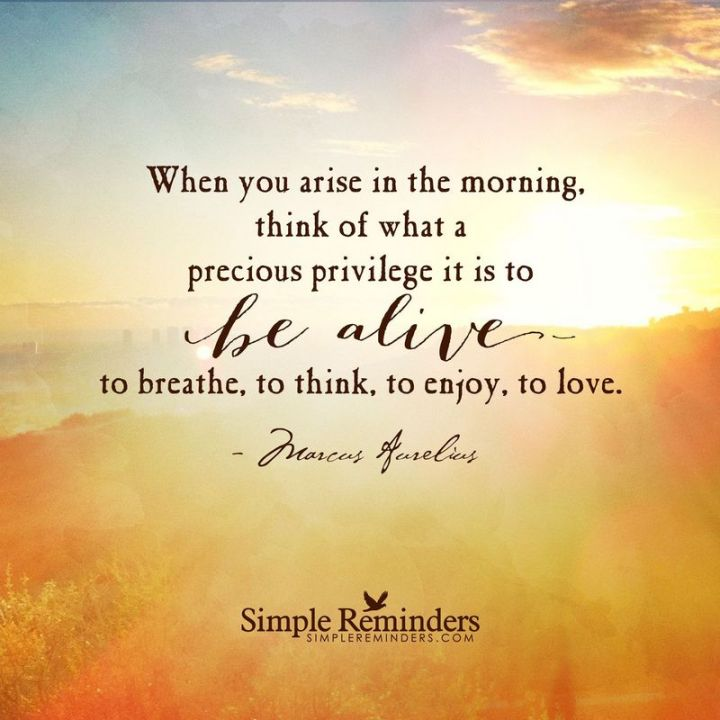 """75 Good Morning Quotes - """"When you arise in the morning, think of what a precious privilege it is to be alive to breathe, to think, to enjoy, to love."""" - Anonymous"""