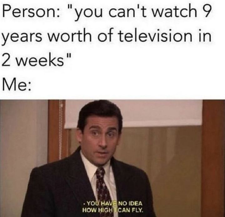 """57 Funny 'the Office' Memes - """"Person: You can't watch 9 years worth of television in 2 weeks. Me: You have no idea how high I can fly."""""""
