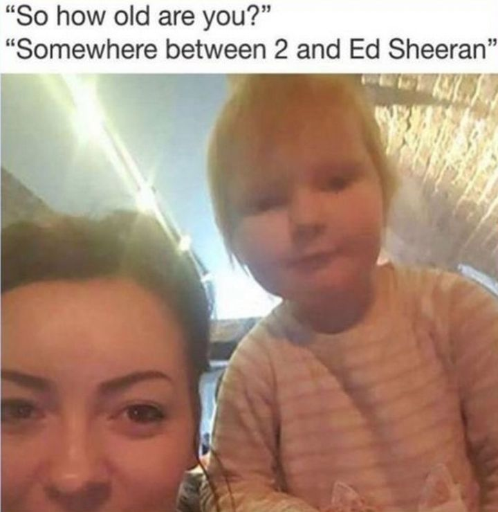"""61 Funny Clean Memes - """"So how old are you? Somewhere between 2 and Ed Sheeran."""""""