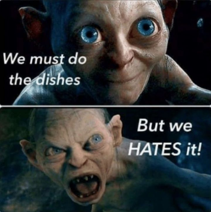 """61 Funny Clean Memes - """"We must do the dishes. But we HATES it!"""""""