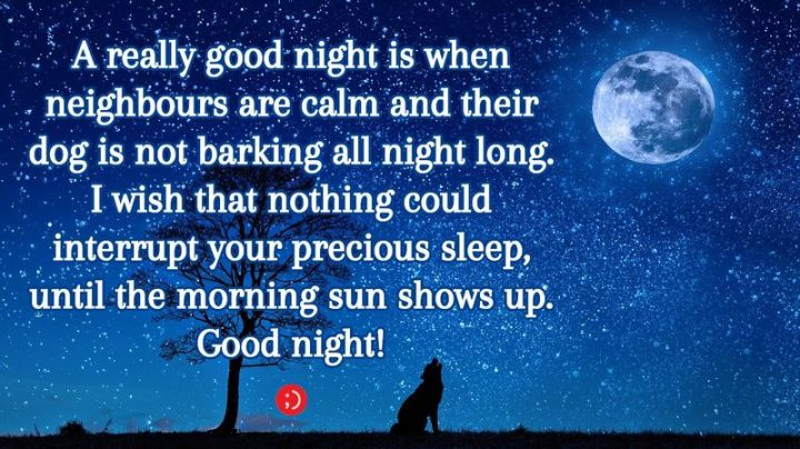 """51 Good Night Images and Quotes - """"A really good night is when neighbours are calm and their dog is not barking all night long. I wish that nothing could interrupt your precious sleep until the morning sun shows up. Goodnight!"""