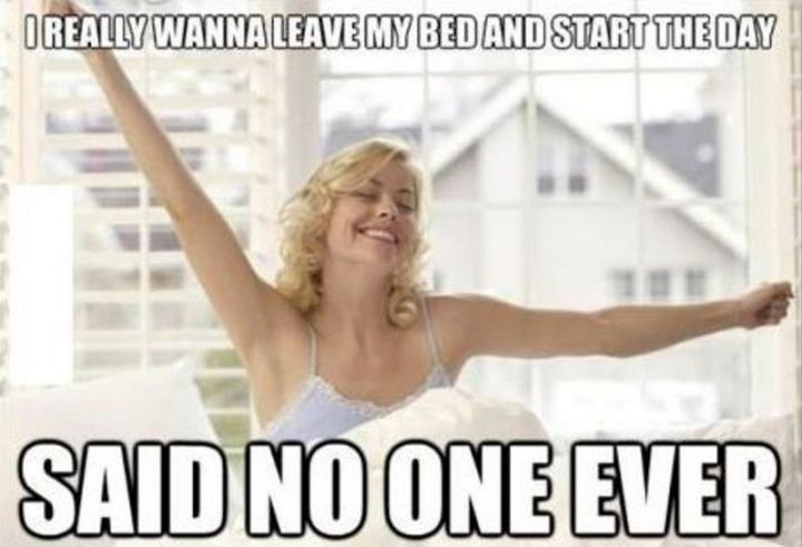 "101 Funny Good Morning Memes - ""I really wanna leave my bed and start the day...Said no one ever."""