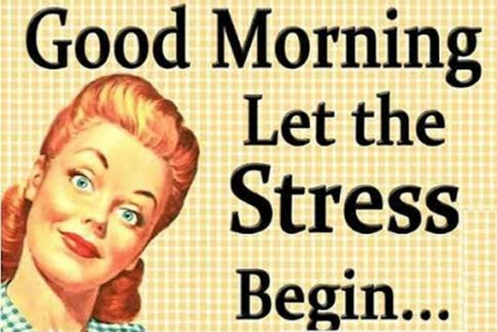 "101 Funny Good Morning Memes - ""Good morning. Let the stress begin..."""
