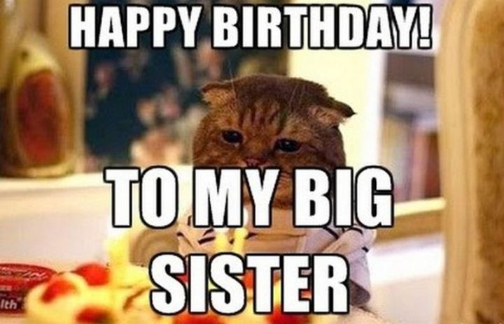 "91 Sister Birthday Memes - ""Happy birthday! To my big sister."""