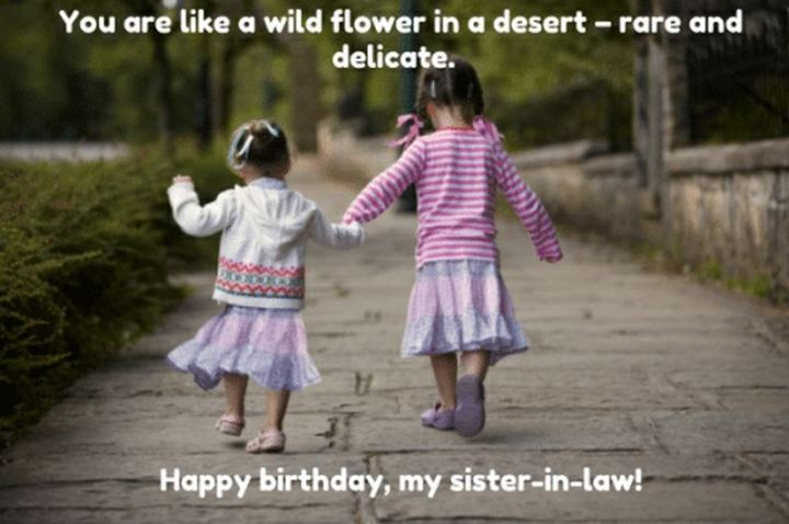 "91 Sister Birthday Memes - ""You are like a wildflower in a desert - rare and delicate. Happy birthday, my sister in law!"