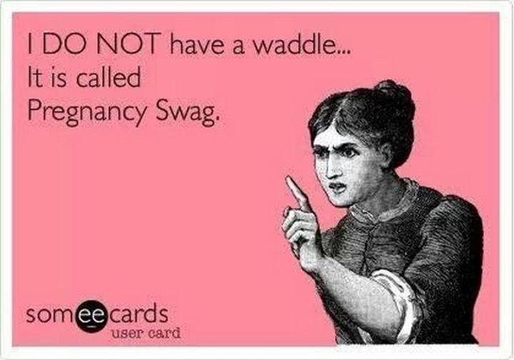 "71 Pregnancy Memes - ""I DO NOT have a waddle...It is called pregnancy swag."""