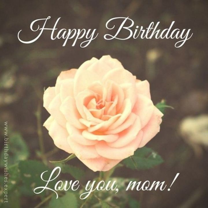 """101 Happy Birthday Mom Memes - """"Happy birthday. Love you, mom!"""""""