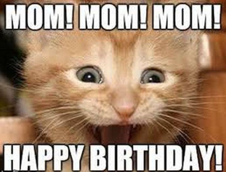 """101 Happy Birthday Mom Memes - """"Mom! Mom! Mom! Happy birthday!"""""""