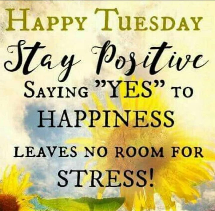 "55 Tuesday Quotes - ""Happy Tuesday. Stay positive. Saying 'YES' to HAPPINESS leaves no room for STRESS!"" - Unknown"