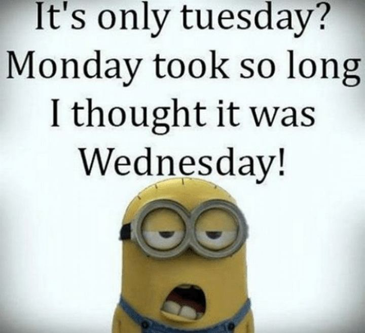 "55 Tuesday Quotes - ""It's only Tuesday? Monday took so long that I thought it was Wednesday."" - Unknown"