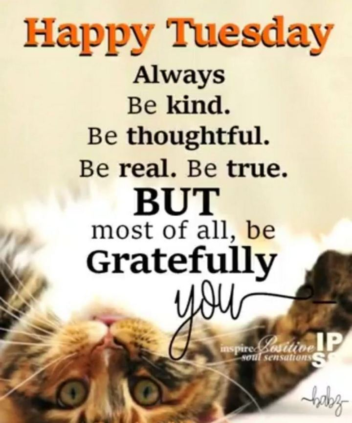 "55 Tuesday Quotes - ""Happy Tuesday. Always be kind. Be thoughtful. Be real. Be true. But most of all, be gratefully you."" - Unknown"