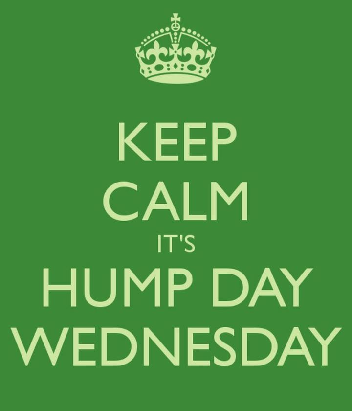 "65 Happy Wednesday Quotes - ""Keep calm, it's hump day Wednesday."" - Unknown"