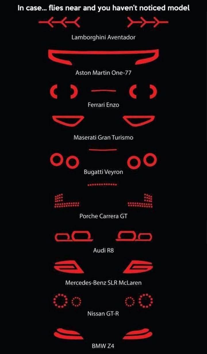 "85 Car Memes - ""In case...flies near at night and you haven't noticed model. Lamborghini Aventador. Aston Martin One-77. Ferrari Enzo. Maserati Gran Turismo. Bugatti Veyron. Porche Carrera GT. Audi R8. Mercedes-Benz SLR McLaren. Nissan GT-R. BMW Z4."""