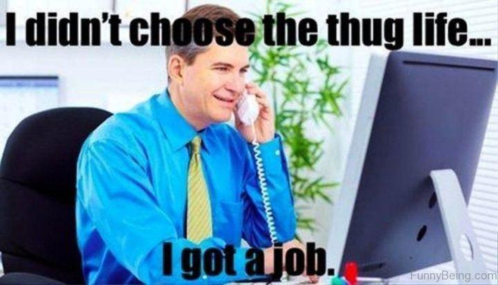 "81 Funny Life Memes - ""I didn't choose the thug life...I got a job."""