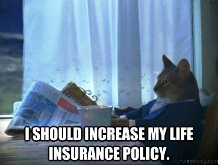 "81 Funny Life Memes - ""I should increase my life insurance policy."""
