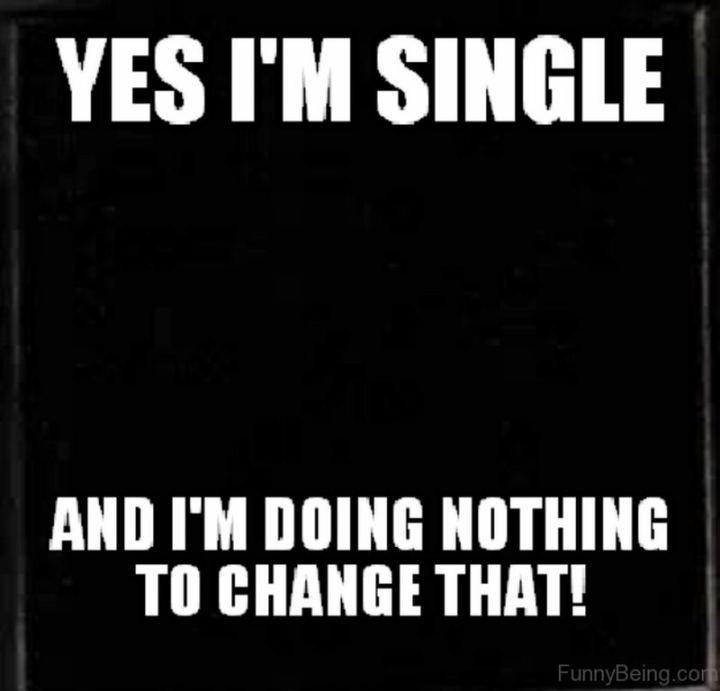 "67 Funny Single Memes - ""Yes I'm single and I'm doing nothing to change that!"""