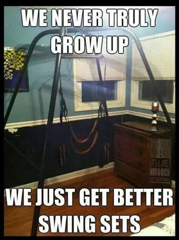 """71 Funny Dirty Memes - """"We never truly grow up. We just get better swing sets."""""""