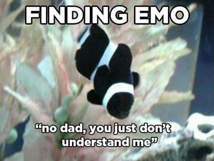 "51 Funny Disney Memes - ""Finding Emo: 'No dad, you just don't understand me.'"""