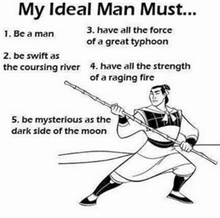 "51 Funny Disney Memes - ""My ideal man must...1) Be a man. 2) Be as swift as the coursing river. 3) Have all the force of a great typhoon. 4) Have all the strength of a raging fire. Be as mysterious as the dark side of the moon."""