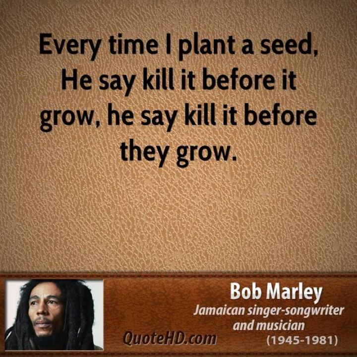 "33 Bob Marley Quotes - ""Every time I plant a seed, He say kill it before it grow, he say kill it before they grow."" - Bob Marley"