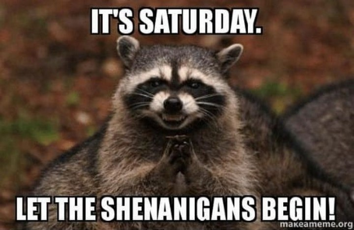 "101 Saturday Memes - ""It's Saturday. Let the shenanigans begin!"""