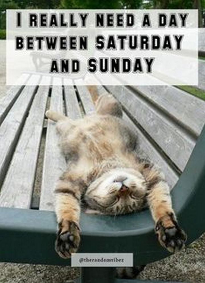 "101 Saturday Memes - ""I really need a day between Saturday and Sunday."""