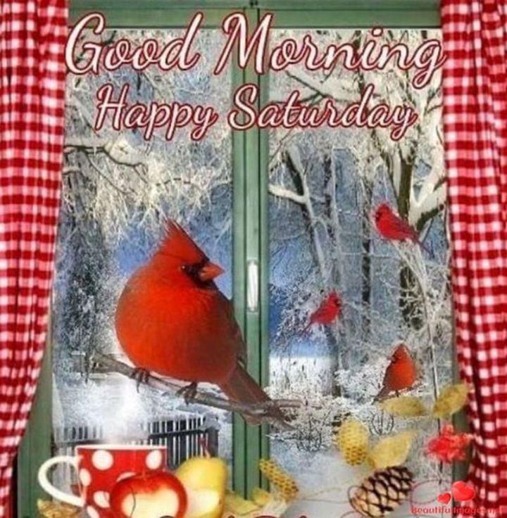 "59 Saturday Quotes - Good morning. Happy Saturday."" - Unknown"