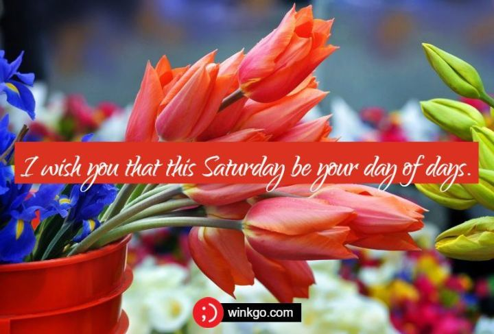 """59 Saturday Quotes - """"I wish you that this Saturday be your day of days."""" - Unknown"""
